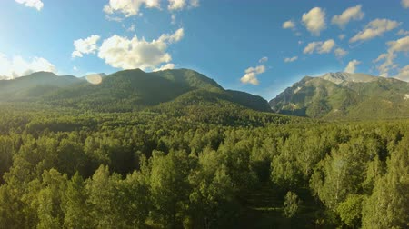 zálesí : Aerial shot above the forest. Flight to the mountains. Drone flies forward over the green trees. Beautiful aerial landscape: mountains, woodland, treetops and blue sky with white clouds