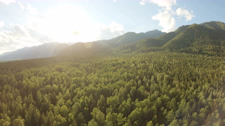 zálesí : Aerial shot of beautiful landscape: mountains, forest, blue sky with clouds, sunset. Drone flying down and rotates to right above the treetops. Panning
