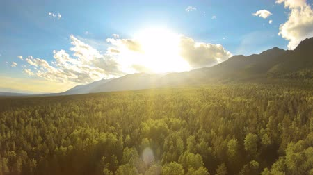 boomtoppen : Aerial view of scenic mountain landscape at sunset. The sun lights up the treetops of a beautiful forest