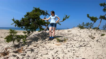 футболки : Girl touches a tree branch on the beach