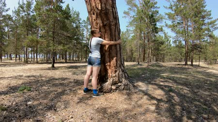 fatörzs : Girl hugging a big tree. Love of nature
