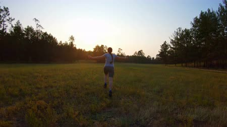 emelt : Cheerful girl, arms raised running across the field at sunset. Slow motion, back view Stock mozgókép