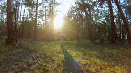 goes : Girl walking in the forest at sunset. Bright sunlight breaks through the trees. Slow motion