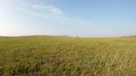 esparso : Walk across the field. Moving forward in the steppe