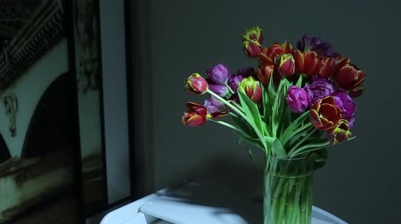 vazo : At night in a vase there is a beautiful big bouquet of tulips