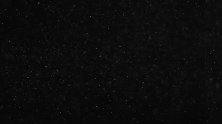 pullu : Dust flying on a black background, ashes, small particles,blizzard