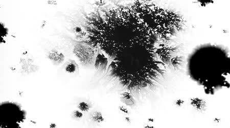splashed : The black and white effect with a drop of ink 1920x1080
