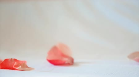 алый : Rose petals pale pink fall from above on a light background