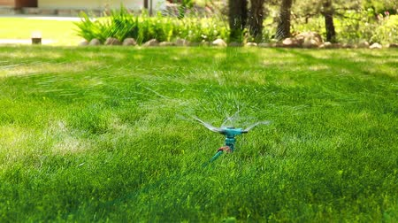 орошение : Lawn sprayer on the plot HD 1920x1080