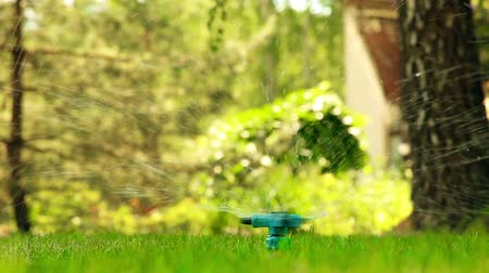 magánélet : Spraying water on the lawn under pressure through the device HD 1920x1080