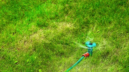 horticulture : Plastic water sprayer in motion on a hot summer day HD 1920x1080