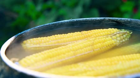 kukoricacső : Cooking sweet corn in black bowler in summer HD 1920x1080