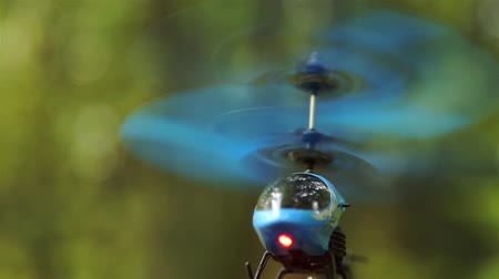 wegen : Blue RC helicopter hovers in the air in the forest Park area HD