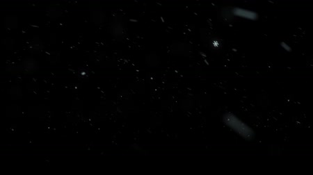 Motion animation of falling snow on black background HD 1920x1080 Stock Footage