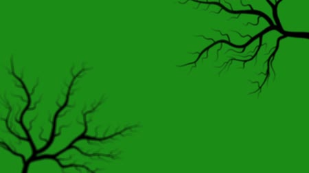 dead forest : Motion graphics the appearance of tree branches on a green background Stock Footage