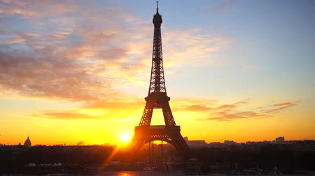 Beautiful sunrise oven the famous Eiffel Tower with flying seagull in Paris, France Stock Footage
