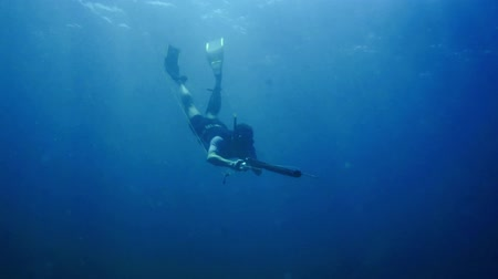 azul : Free diver fishing 2