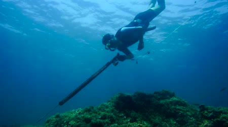 azul : Free diver fishing Stock Footage