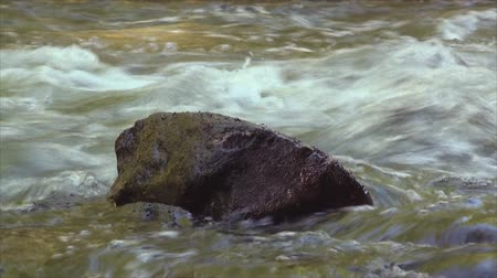 бросаясь : Close up of big rock in the rushing stream 4. Стоковые видеозаписи