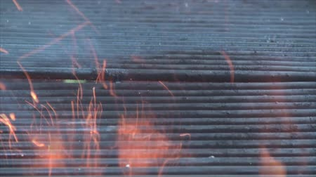 penetrating : Fire pit and flames penetrating through grill. Stock Footage
