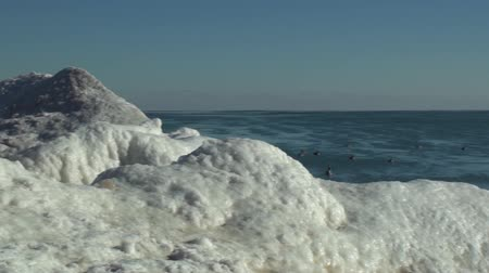esquerda : Panning left to right of Geese at the frozen Lake Michigan beach in Racine, Wisconsin. Stock Footage