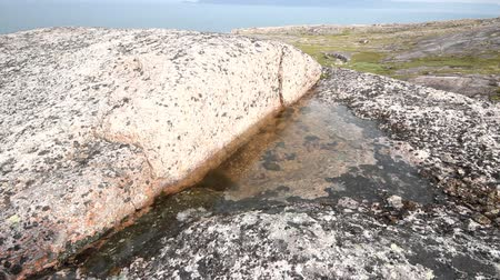 crevice : fresh water in rock among salty ocean