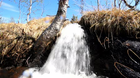 aqueous : River clean natural water. Lapland Stock Footage