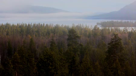 mocný : Lapland taiga. Spring forest wakes up, fog creeps over icy lake and hills, birds singing