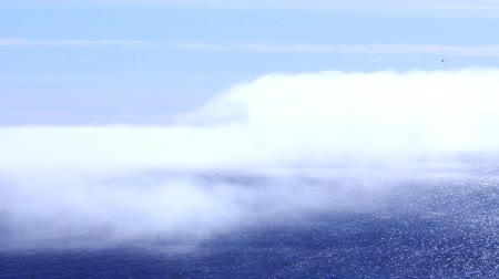 pieski : View from rocks on blue water, clouds and fogs of Arctic ocean. Rare Sunny day in high Arctic, birds are flying