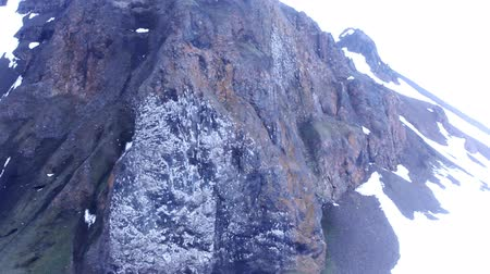 kittiwake : Rookery of gulls Kittiwakes (tarrock, Rissa tridactyla) on Champ island, Franz-Joseph Land. Steep rock and birdy spot