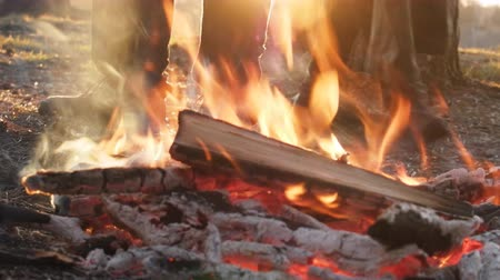 hot pot : Stop during hike, fire and feet of tourists in forest Stock Footage