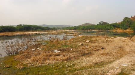 thoroughfare : Marshy river valley with bushes in winter and egrets. South India