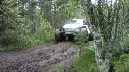 quad bike : Russia, Solovki - JULY 28, 2015: swamp jeep on a  road in  forest Stock Footage