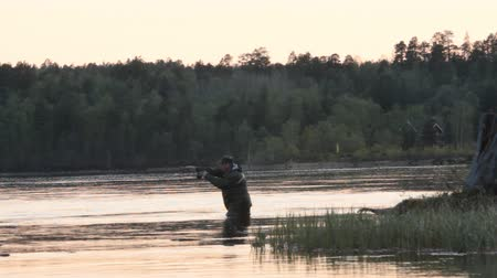 fly fishing : Russia, Nickel - may 30, 2016: Fishing trip to Scandinavia. Salmon catching with flyfishing on clean North river, fisherman in waterproof suit in middle of river, sunset