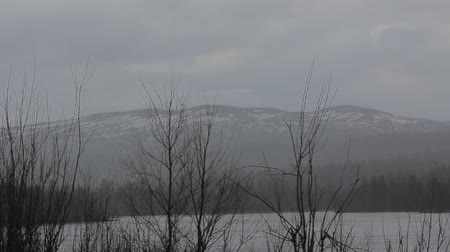coldness : Cold early spring in Scandinavian fells. Bare wood, there is wet snow, thawed patches on slopes of mount Stock Footage