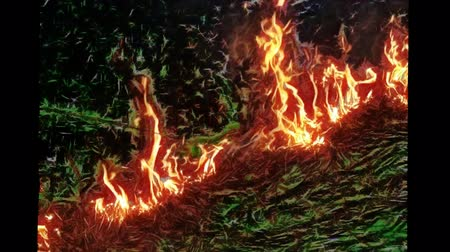 anız : Fractal video. Fire on the Prairie. Flames and discharges energy Stok Video