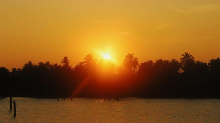 areca : Kerala backwaters, India. Tropical landscape. Channels and tropical sunset