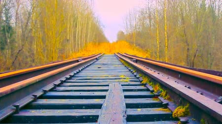 огрызок : Railway siding, railway deadlock, dead-end track in forest