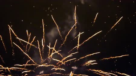 resplandor : spectacular night fireworks in festive day, different types of fireworks display, artillery volleys salute, festive glitter