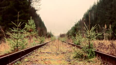 koçan : Railway siding, railway deadlock, dead-end track in forest