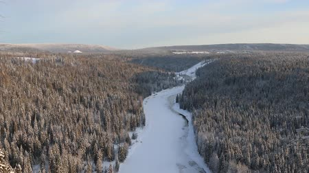 softwood forest : Ural taiga. Birds eye view of dense marshy forest in Siberia, boreal forest, low winter sun, frozen river and foothills (bald mountains) of Ural mountains, not far is border of Europe and Asia Stock Footage