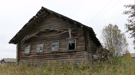 huskies : Old culture of wooden houses goes back in time. Russian Northern log hut (Houses of Veps) abandoned by its owners and destroyed Stock Footage