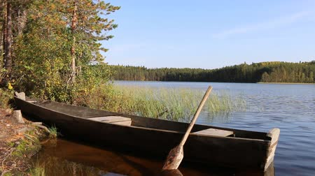 kürek çekme : Wooden homemade boat (punt) with sliced oar on forest lake. Boats are traditionally used for fishing with light at night and nets. North Russia, Vepsian Karelia Stok Video