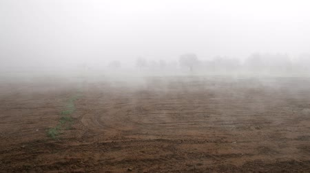 economia rural : Foggy agricultural fields, lonely tree. Land is left for winter as ploughed land, sowing has passed, spring sun warmed earth, soil dries and steam rises. Beautiful farm landscape in fog Vídeos