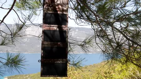 watt : A set of portable solar panels used for camping. battery charger eco-friendly portable gadget for self-powered Stok Video