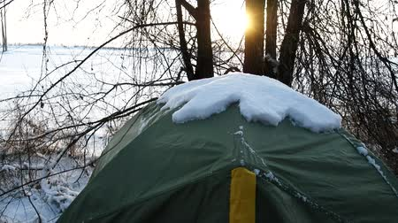 wandering : Tent is covered with snow. Unexpected cold and overnight hikers in subtropical snow-covered forest.