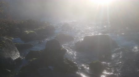 serenidade : Charm of morning mist. Haze and spray on rapids of mountain river. Ray of morning sun breaks through foggy milk Vídeos