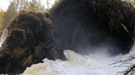beekje : Full-flowing powerful waterfall after the autumn rains. On the background of autumn trees with yellow foliage Stockvideo