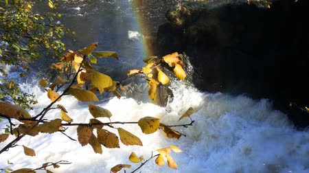 fascination : Spray of waterfall to form rainbows. splashes of water glow and shimmer in the sun Stock Footage