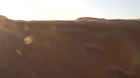 фиксация : Singing barchan or buzzing dune. The wind blows thin sand from the crest of the dune, there is a buzz. Drifting sand, wandering dune, sand binding or dune fixation. Great Indian desert, Thar Стоковые видеозаписи